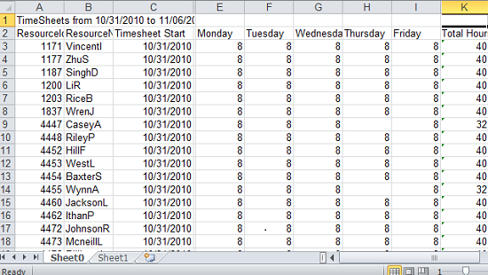 P6eppm Timesheets Excel Sheet